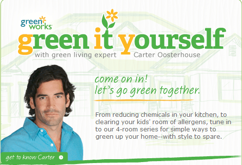 greenityourself Green Works Green It Yourself Tip: Clean the Air toddler tips parenting mom Health family facebook cleaning clean